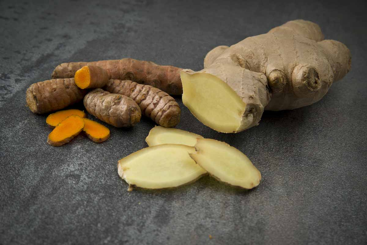 Turmeric and Ginger